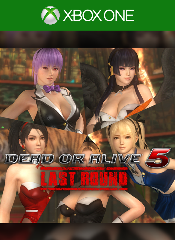DEAD OR ALIVE 5 Last Round Sexy Bunny Costume Set